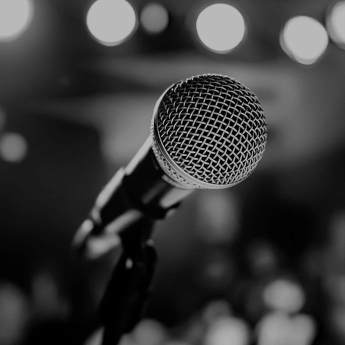microphone micro pour plus d'ampleur et de puissance du son